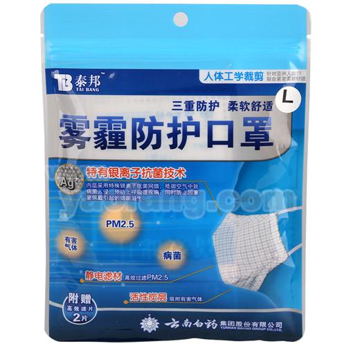 雾霾防护口罩(泰邦)